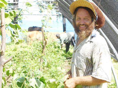 Permaculture Design Certificate in the Caribbean