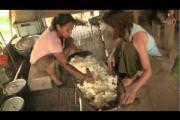 Como Hacer Chicha de Yuca! (Amazonia Kichwa, Ecuador)