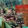 Lemurian Embassy Eco Village Retreat
