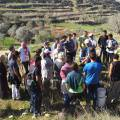 The First EDE Course in Palestine