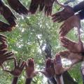 2nd ecovillage Kinshasa workshop