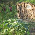 AZ Eco-village